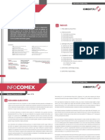 infocomex010.pdf