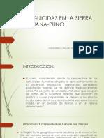 Plaguicidas en La Sierra Peruana-puno