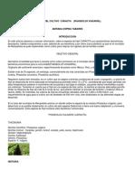 Libro Sistemas de Pdn Marquetalia.