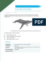 Ejemplos de preguntas saber 5 ciencias naturales 2012 v3-convertido.docx