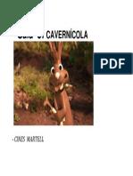 CAVERNÍCOLA.docx