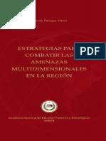Estrategias Para Combatir Las Amenazas Mutidimensionales en La Region