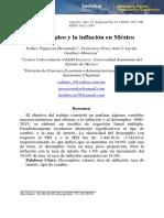 Dialnet-ElDesempleoYLaInflacionEnMexico-
