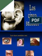 2.los_sentidos.ppt