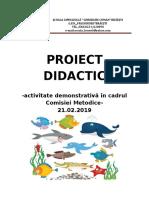 Proiect Didactic Dlc Pestisorul Curcubeu