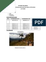 Informe Preliminar Palos Blancos