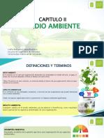 Capitulo 2 gestión ambiental