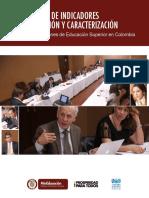 Estructura de Indicadores de Perfilación y Caracterización IES