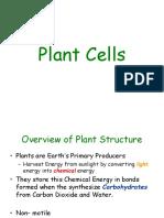 Talk 2-Plant Cells