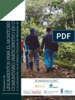 Monitoreo comuntario.pdf