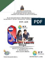 PLAN DE ESTUDIO Y PROGRAMA  CURRICULAR ASISTENTE EJECUTIVO BILINGUE.pdf