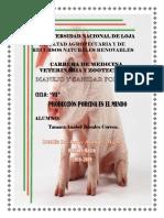 produccion de cerdos.docx