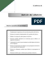 Gestion Del Efectivo ACA (4)