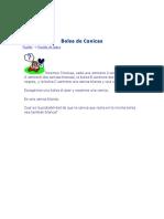 Bolsa de Canicas.pdf