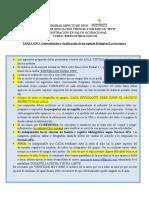 TAREA UNO.doc