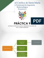 BIO Práctica 9 (1)