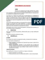 Botanica informe.docx