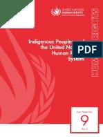 IP&UN-HRsystem.pdf