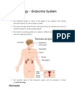 Endocrine System Notes_NCERT Based