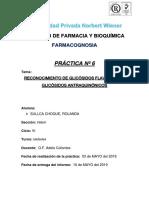 informe...6 FARMACONOGSIA.docx