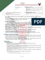 IP D. Financiero