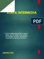 ETAPA INTERMEDIAA.pptx