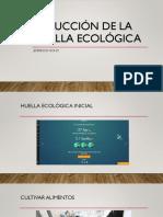 Nono.Ecologia.pptx