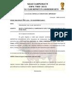 Bases 28 de Julio 2019 - Chacayán