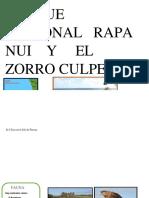 prueba de r rr