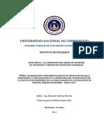 UNACH-IPG-SEG-IND-2011-0001.pdf