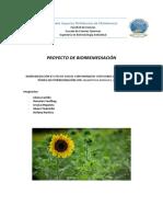 PROYECTO UNIDO.docx
