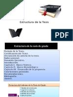 estructura tesis.pptx