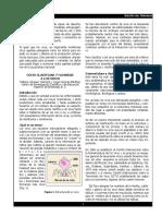 Boletin2004 Clasificar virus Acuicolas