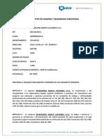 Reglamento HySI Marco Colombia (1).docx