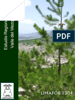 2940 Estudio Regional Forestal Del Valle Del Mezquital 1304 Hidalgo