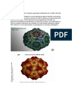 Parvovirus, Adenovirus Virus Herpes y Vhs