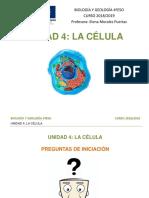 U4. Preguntas de Iniciación