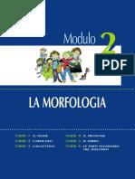 2_morfologia
