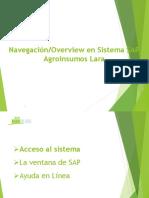 Manual Navegacion_Overview SAP AIL