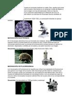 5 Tipos de Microscopios