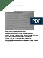 Trabalhos de Compensação de Ausência -Sociologia.1