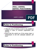 Small Animal Positioning