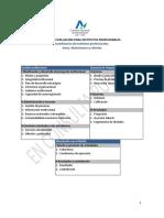 Pautas IP .pdf
