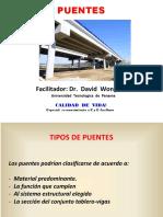 INTRODUCCION A LOS PUENTES - DISEÑO (2).pdf