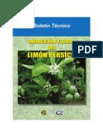 Boletin limon.pdf