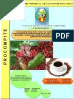 PDN AEO SARAHUASI.pdf