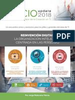 Cio 2018-17178.pdf