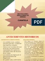 DIAPOSITIVA CURATELA.pptx