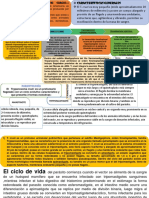 resumen  III  EXAMEN MICROBOLOGIA .pptx