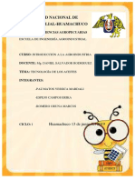 Informe de Aceites 2 PDF